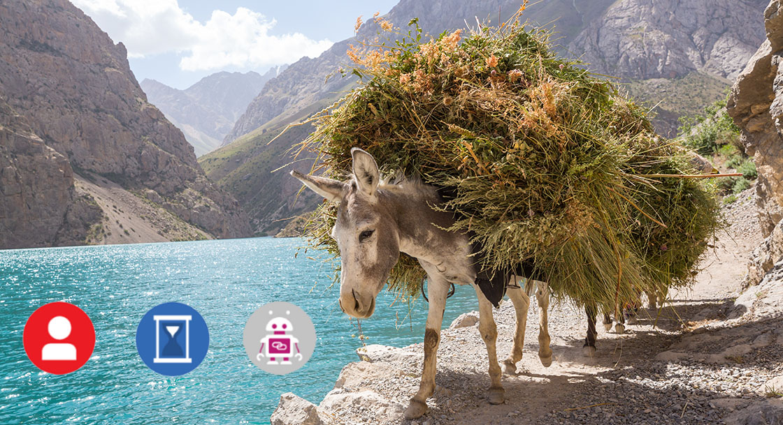 Why are we still using the donkey? Utilise new technologies to unlock your businesses potential.